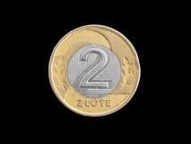 злотый монетки польский Стоковое Изображение RF
