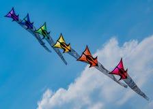 6 змеев формируют радугу стоковая фотография rf