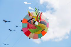 Змеи летая в голубое небо Змеи различных форм Стоковая Фотография