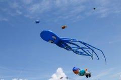 Змеи на голубом небе Стоковое фото RF