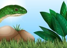 Змейка вползая в саде иллюстрация вектора