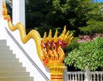 Змейка дракона Naga в виске Wat в Таиланде Стоковое Фото