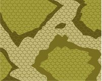 змейка кожи картины Стоковое Изображение