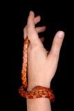 змейка мозоли Стоковые Фото