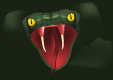 змейка нападений Стоковые Фото