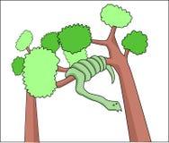 Змейка на дереве Стоковые Фото
