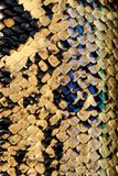 змейка питона Стоковые Изображения RF