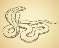 Змейка предпосылка рисуя флористический вектор травы бесплатная иллюстрация