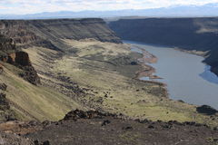 змейка реки каньона стоковая фотография
