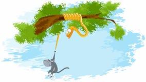 Змейка свертывает обезьяну на вашем кабеле видеоматериал