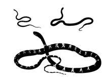 змейка силуэта собрания Стоковые Фото