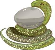 Змейка с яичком Стоковое Фото