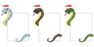 Змейка шаржа держит карточку бесплатная иллюстрация