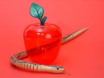 змейка яблока Стоковые Изображения RF