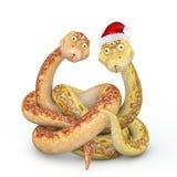 Змейка 2013 Стоковое фото RF