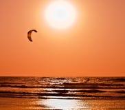 Змей занимаясь серфингом на заходе солнца Стоковые Фотографии RF