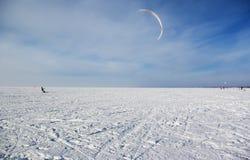 Змей зимы Стоковая Фотография RF