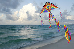 змей летания florida пляжа Стоковые Изображения