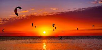 Зме-серфинг против красивого захода солнца Много силуэтов набора Стоковые Изображения