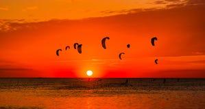 Зме-серфинг против красивого захода солнца Много силуэтов набора Стоковые Изображения RF