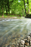 знайте реку Стоковая Фотография