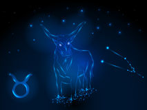 Знаки зодиака космофизики Стоковое Изображение