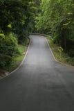 Знаки кривой дороги Стоковые Изображения