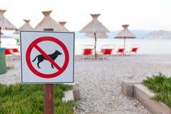 Знаки объявляя запрет на собаках на пляже Стоковые Фотографии RF