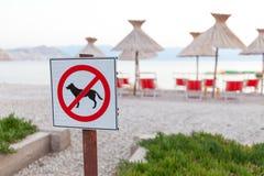 Знаки объявляя запрет на собаках на пляже Стоковое Фото