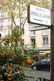 Знаки улицы Парижа, деревья цитруса Стоковые Фото
