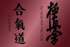 знаки kyokuhiinkai aikido Стоковое Фото