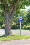 Знак автобусной остановки под живописным деревом клена Стоковое Изображение RF
