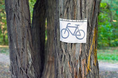 Знак велосипеда на дереве Стоковое фото RF