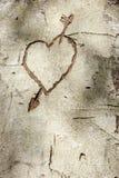 знак влюбленности стоковые фото