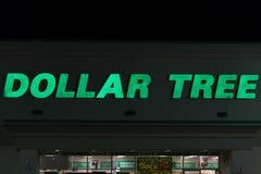 Знак дерева доллара на ноче Стоковые Изображения RF