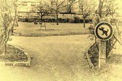 Знак запрещая идя собак Стоковое Изображение RF