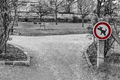Знак запрещая идя собак Стоковые Фото