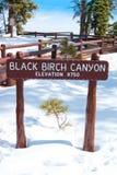Знак каньона черной березы Стоковая Фотография RF