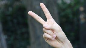 Знак мира или рука подсчитывая 2 Стоковое Изображение RF