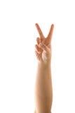 знак мира руки Стоковое фото RF
