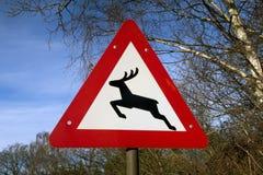 Знак оленей Стоковые Изображения RF