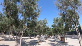 Знак парка Яблока сток-видео