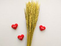 Знак показывая вышитую сердцем красную влюбленность писем Стоковые Изображения