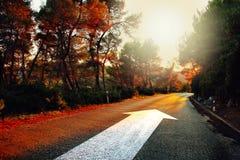 Знак прямой стрелки на дороге захода солнца Стоковые Фото