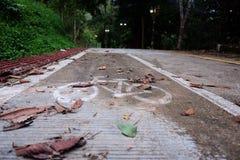 Знак пути велосипеда на улице асфальта Стоковое фото RF