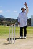 Знак свободного от игры дня signaling судьи на вышке сверчка во время спички стоковое фото