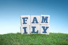 Знак СЕМЬИ сделанный из деревянных блоков на зеленой траве Стоковое Фото