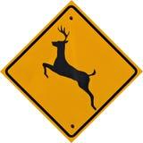 Знак скрещивания оленей стоковое фото rf