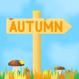 Знак с осенью надписи Стоковое Фото