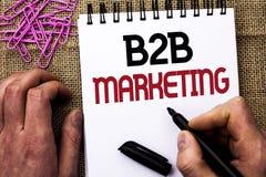 Знак текста показывая маркетинг B2B Схематическое дело фото к коммерции торговых операций дела написанной человеком держа mar Стоковое фото RF